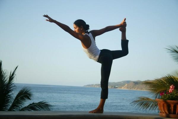 Pojam i poreklo joge